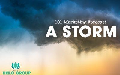 101 Marketing Forecast: a Storm!